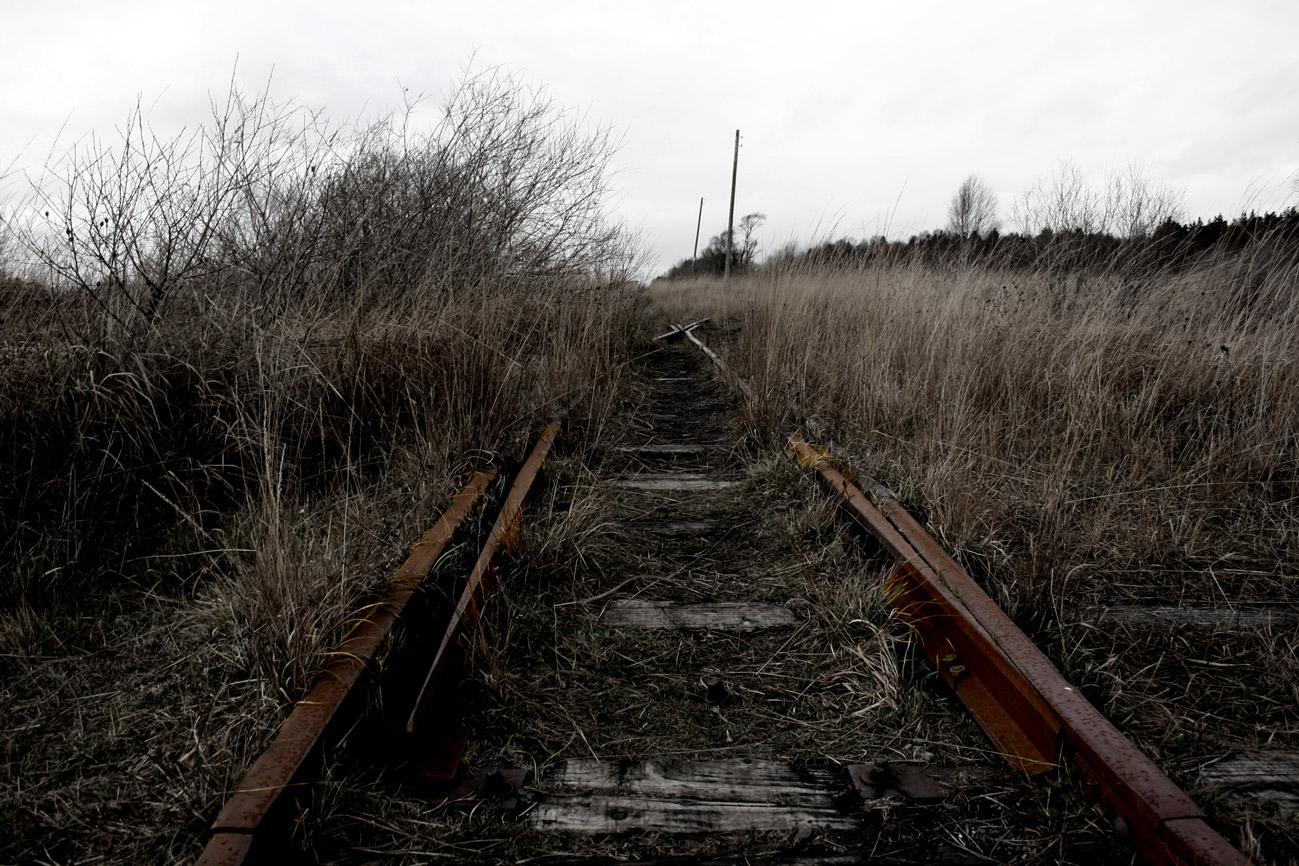 A photograph of train lines running between black grass (edited photograph)